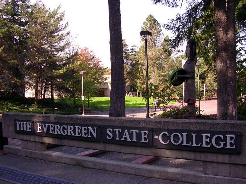evergreen15